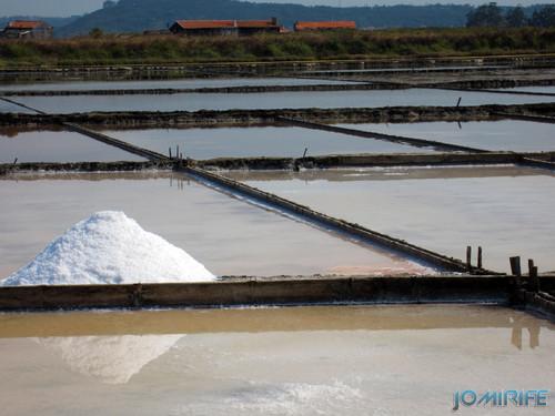 Salinas da Figueira da Foz (16) Campos de sal [en] Salt fields of Figueira da Foz in Portugal