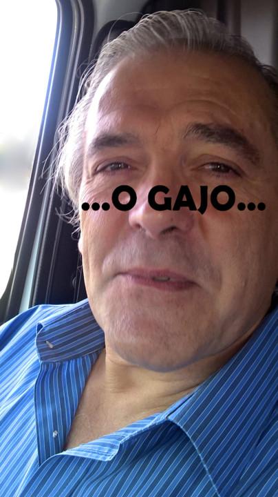 O Gajo III.jpg