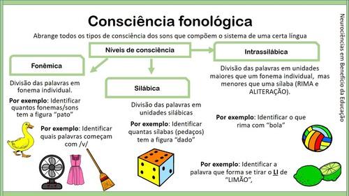 consciência fonologica_neurociencias e educação