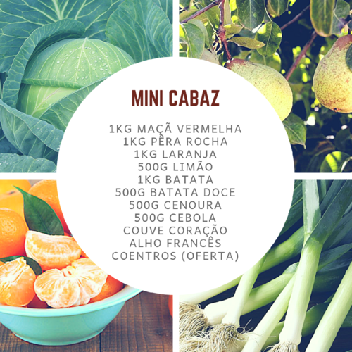 MiniCabazJan.png