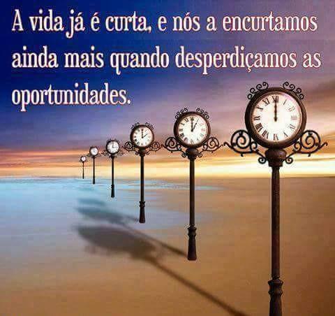 FB_IMG_1482089438197.jpg