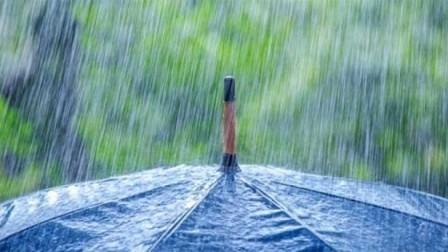 rain-umbrella-750x347.jpg
