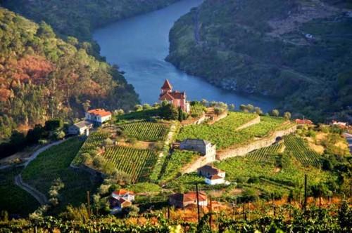 Alto-Douro-Vinhateiro-Patrimonio-Mundial-19.jpg