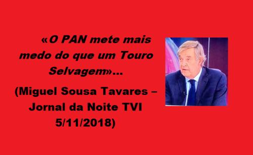 SOUSA TAVARES.png