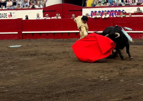 Ivan Fandiño, deambulando com a muleta...