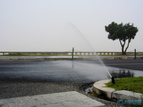 Regador virado para a estrada só serve para lavar os carros na Figueira da Foz (2) [en] Watering facing the road only serves to wash the cars