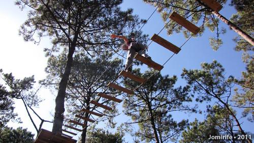Parque Aventura: Pelas tábuas lá no alto