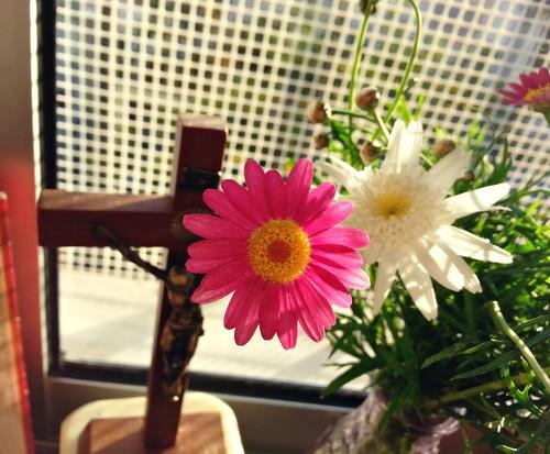 cruz e flor.jpg