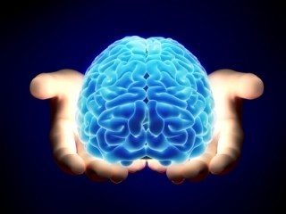 Photo-of-Brain-in-Hands.jpg