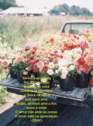 FB_IMG_1490691560618.jpg