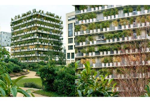 fotos de jardins horizontais:Download Natureza na Cidade