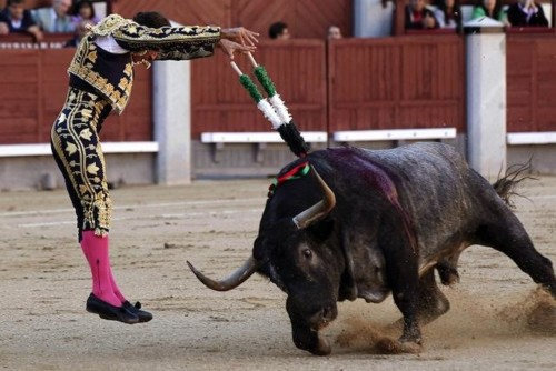 bullfight-madrid.jpg