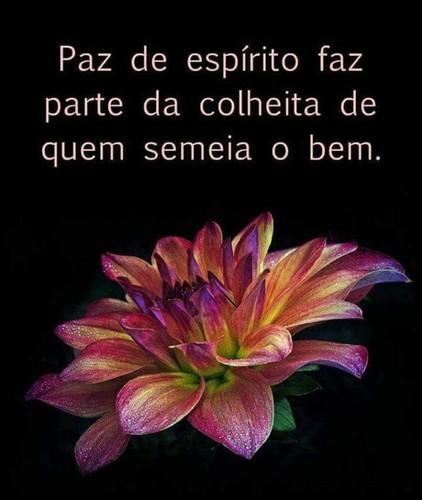 FB_IMG_1498848301927.jpg