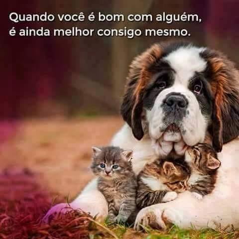 FB_IMG_1474308555352.jpg