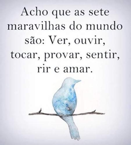 maravilhas3.png
