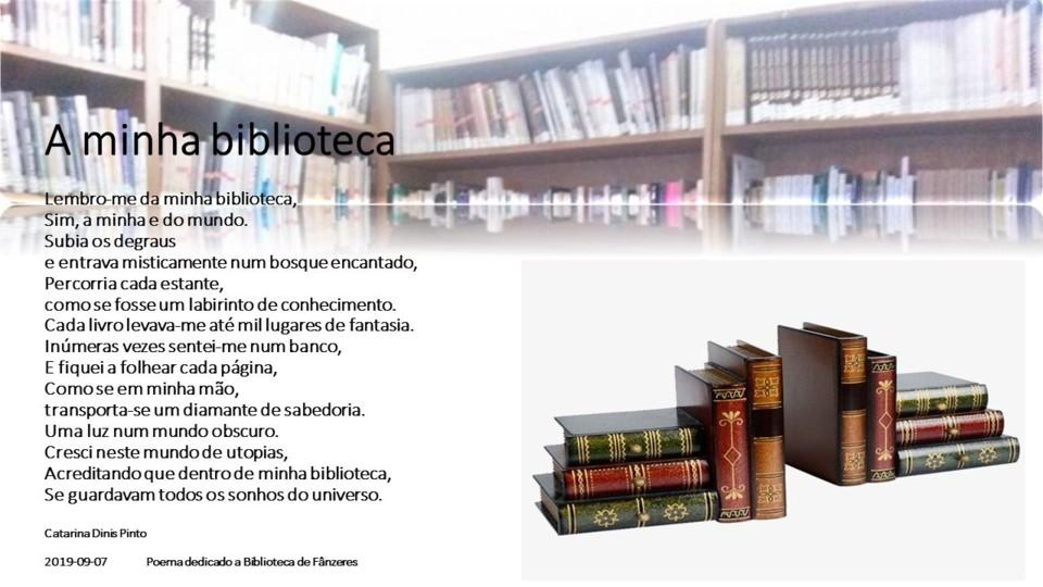 a minha biblioteca.jpg