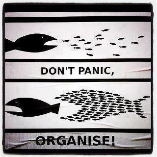 Organização.jpg