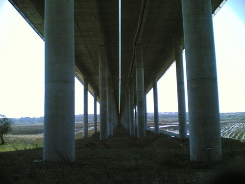 Viaduto A17 por baixo em Casais das Camarinheiras