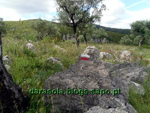 Buracas_Casmilo_07.JPG