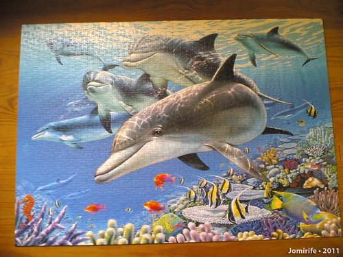 Puzzle dos Golfinhos com 1500 peças (1)