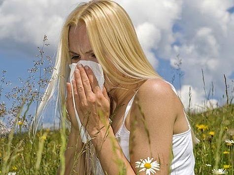 Febre dos fenos
