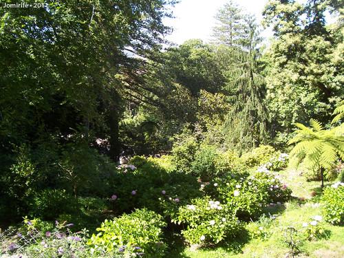 Sintra: Quinta da Regaleira - Jardim