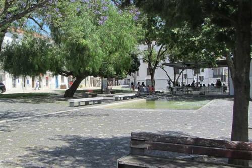 Jardim-768x514.jpg