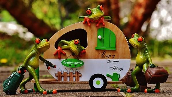 frogs-1358820__340.jpg