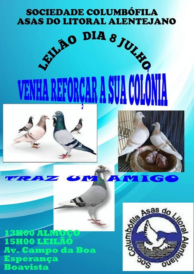 Leilão Asas Litoral Alentejano.jpg