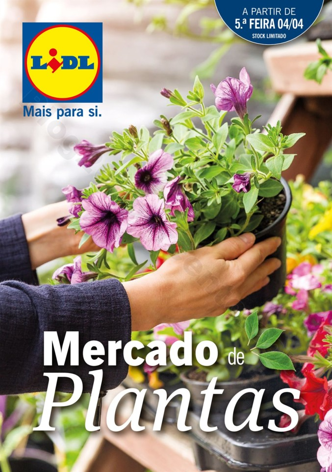 Mercado-de-Plantas-A-partir-de-04.04-01_000.jpg