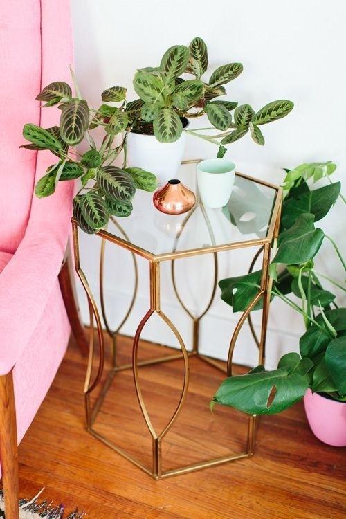 Refresque o design da sua casa com uma decoração verde (Imagem: www.designsponge.com)