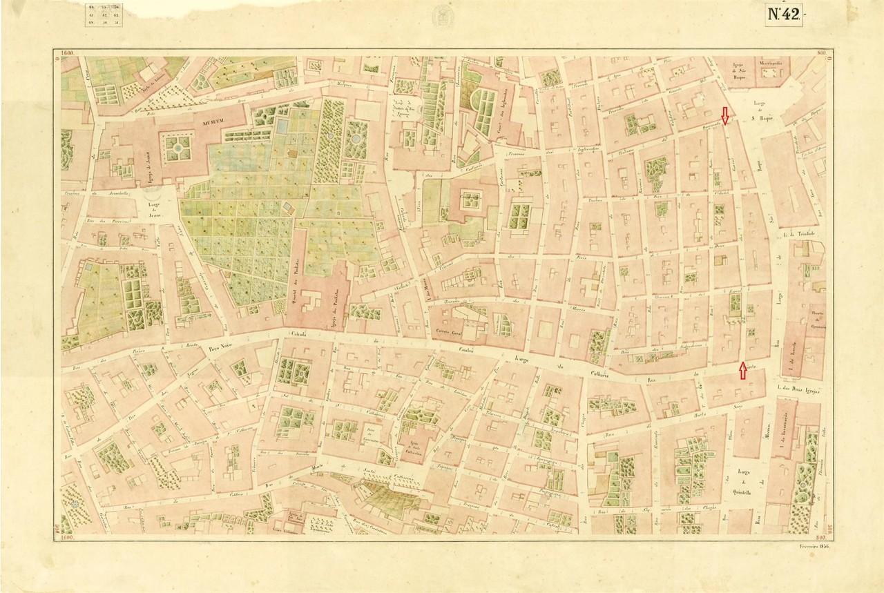 Atlas da carta topográfica de Lisboa N 42, 1856,