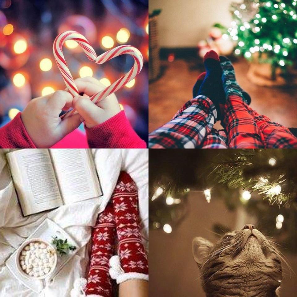 BLOGMAS | Dia 5: ideias para fotografar no Natal