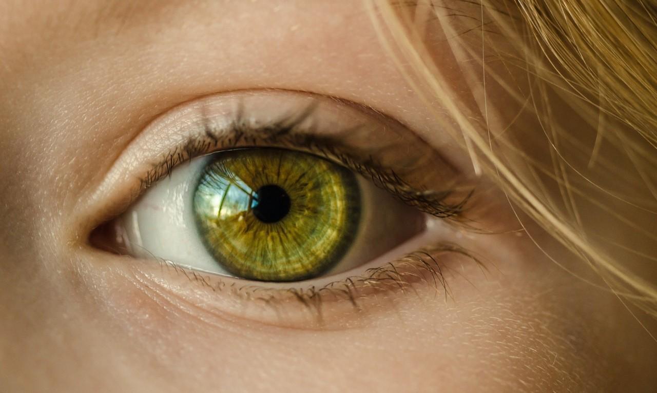 eye-1132531_1920.jpg