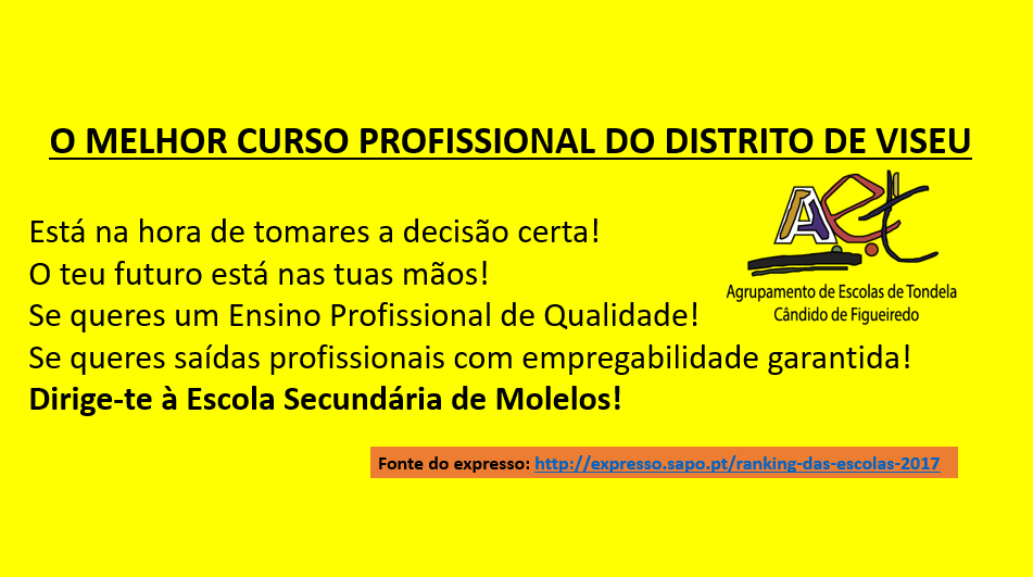 CURSO PROFISSIONAL.png