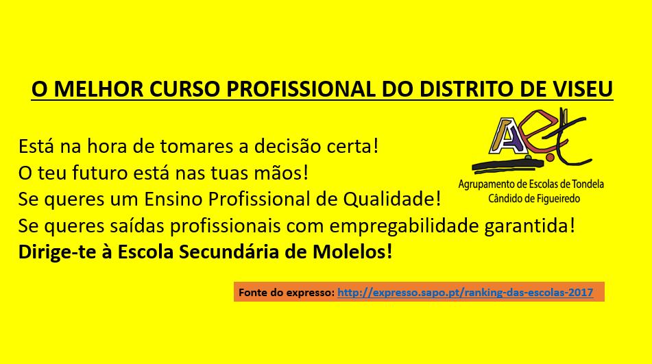 CURSO PROFISSIONAL.png