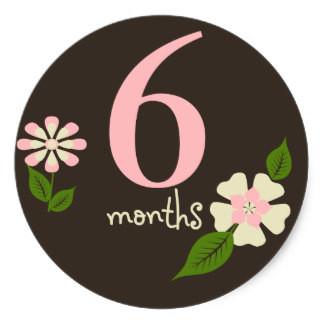 brown_floral_6_months_belly_round_sticker-r161cd01