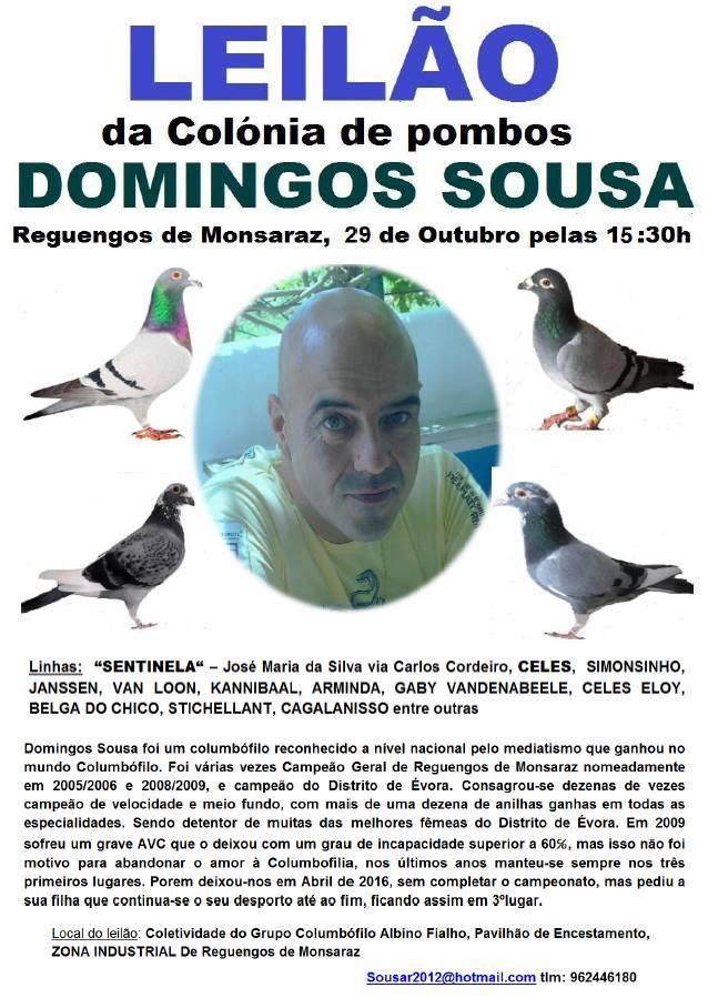 Leilão DSousa.jpg