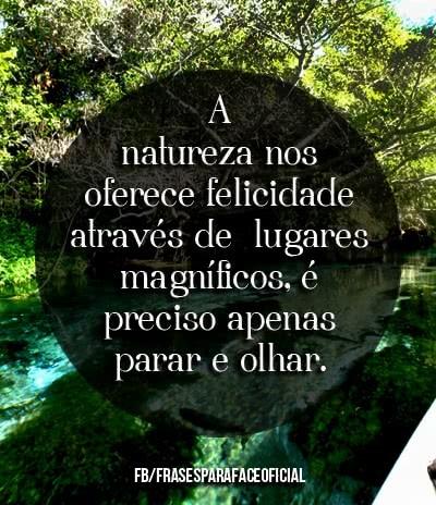 a-natureza-nos-oferece-felicidade-atraves-de.jpg