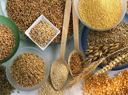 cereais-e-sementes-para-emagrecer.jpg