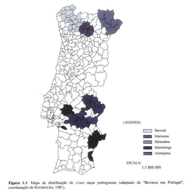mapa bovinos.JPG