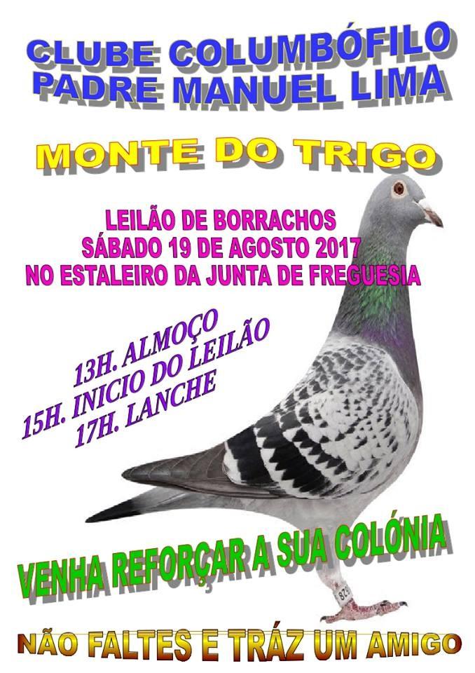 Leilão Monte Trigo.jpg