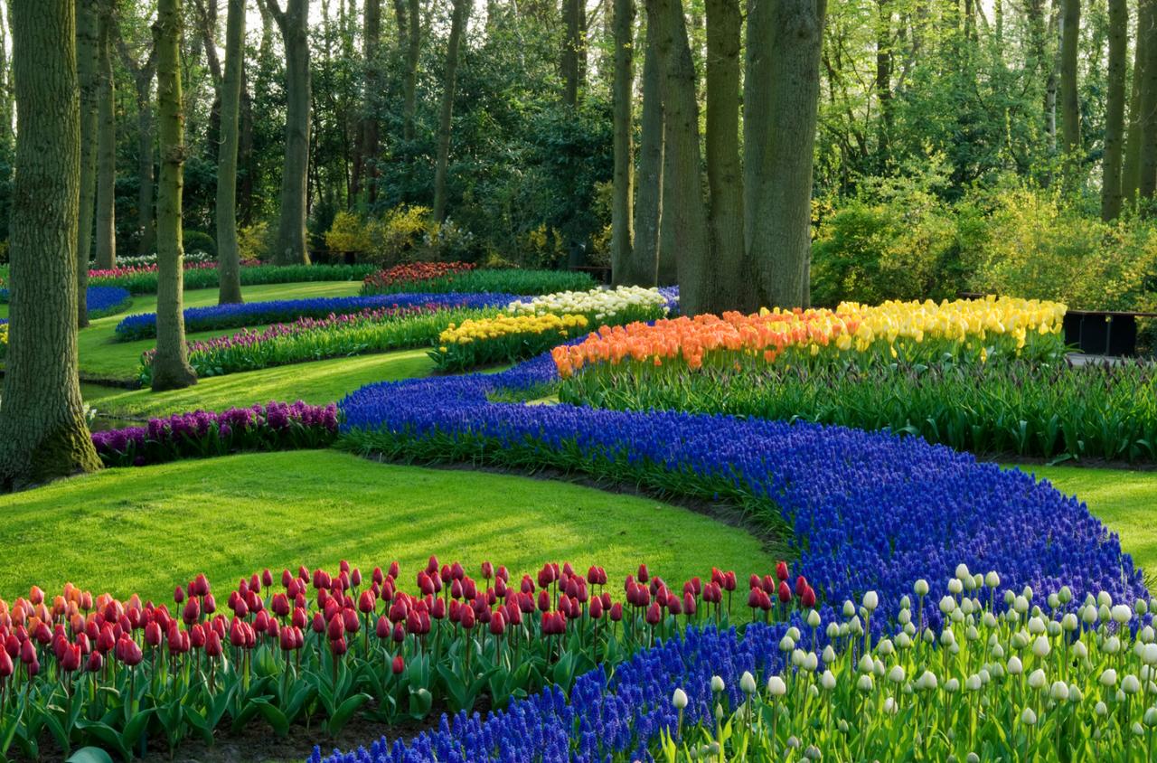 jardins-70.jpg.png