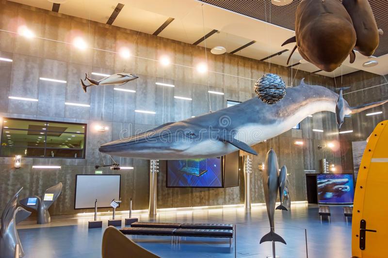 baleia3.jpg