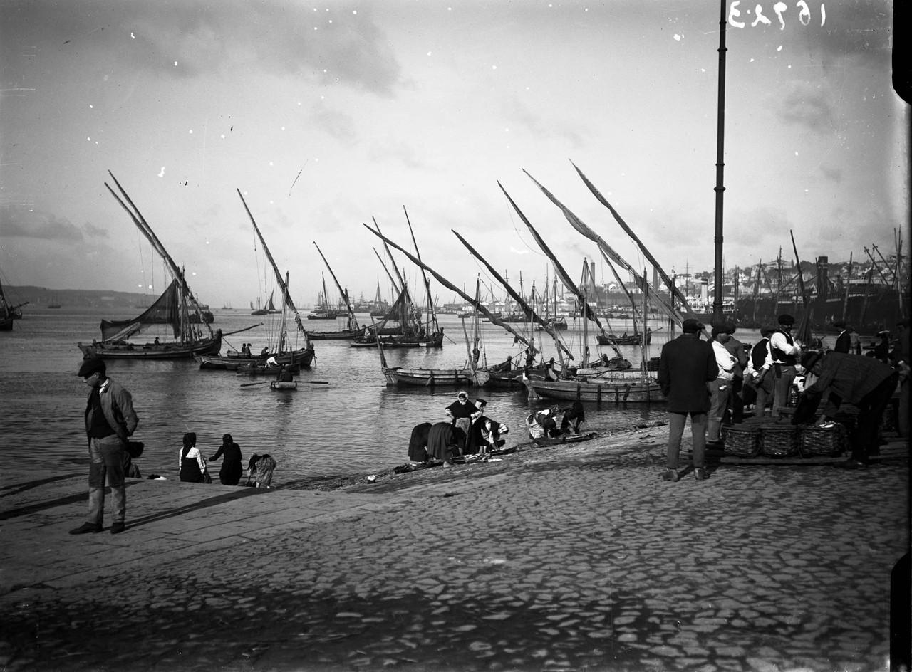Embarcações no rio Tejo, fotógrafo ni.1.jpg