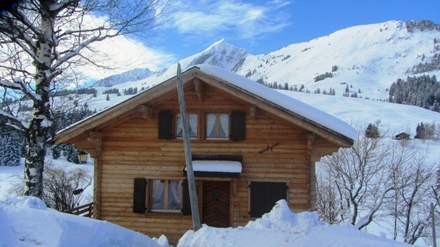 Alpes_Suiços2.JPG