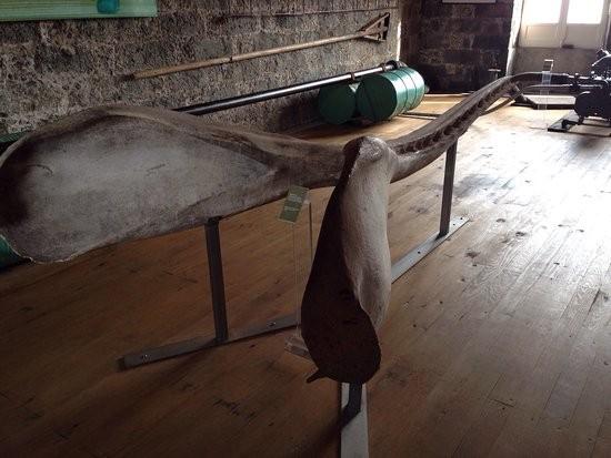 museu-da-industria-baleeira.jpg