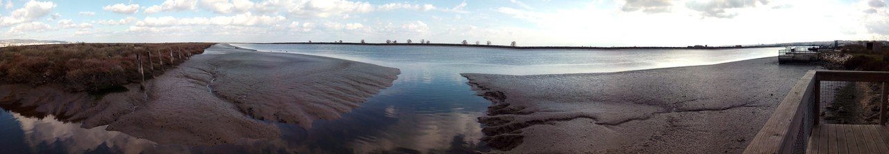 Parque Linear Ribeirinho do Estuário do Tejo (3).