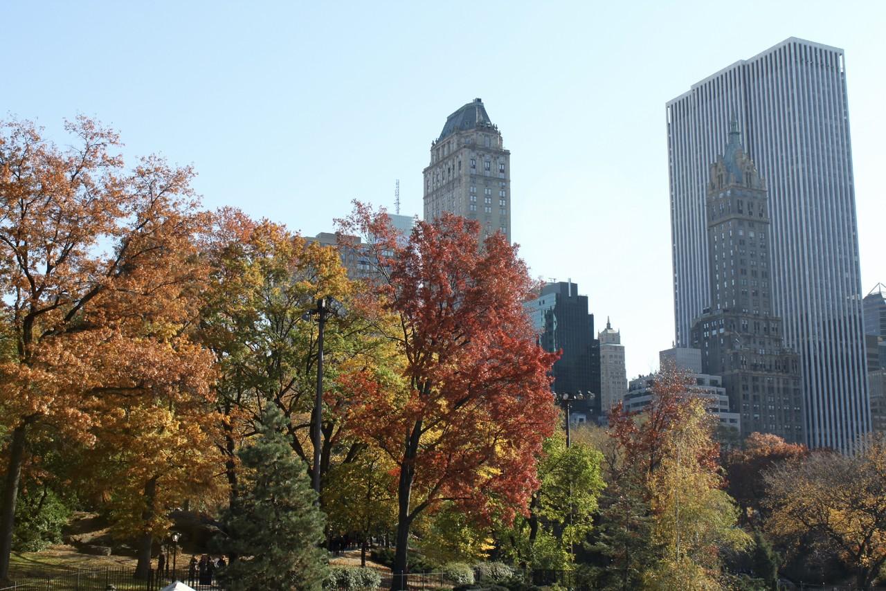 New_York_(112).jpg