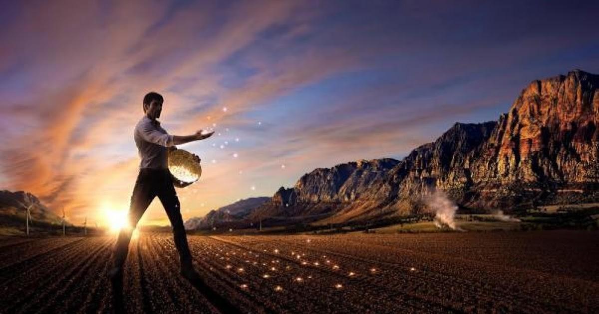 semeando o futuro.jpg